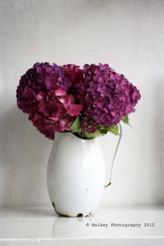 Purple & mauve hydrangeas in an enamel jug