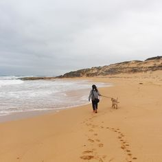 Romantic walks on the beach with this uber cute guy. #golden #goldenretriever #goldensofinstagram #warrnambool #beach #nature #footsteps #ocean #adventure #roadtrips #seegor #placestovisit_victoria #victoria #visitvictoria #scenery #romantic #camping #dog #instadog #sea #ilovemypet #ilovemydog #travel #travelgram #photography #explorevictoria #seeaustralia by the.adventouriist