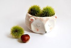 Ceramic Hedgehog Bowl in White Clay and Decorated with Pigments in Pink, Brown and Black Colors. Made To Order by Barruntando on Etsy Ceramic Planters, Ceramic Bowls, Ceramic Pottery, Ceramic Art, Ceramic Animals, Cerámica Ideas, Cute Hedgehog, Hedgehog House, Rose Bowl