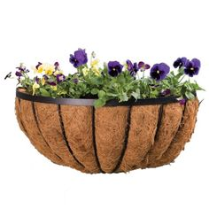 Panacea 88539 Cotswold Series Wall Planter Black 16Inch *** Details can be found by clicking on the image.