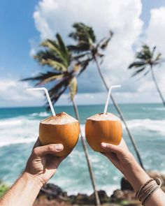 #SriLanka #Caribbean #CoconutWater #Photograph Summer, Vacation, Sun tanning, First day of school - Follow @extremegentleman for more pics like this!