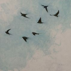 Swallow Studies, oil by T.Allen Lawson, 12 x 12 inches, SOLD