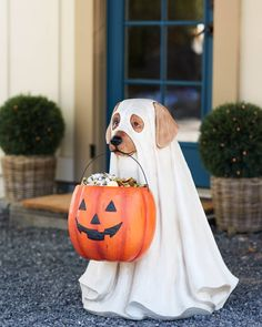 Make trick-or-treating simple with this ever-helpful pup. Carrying a giant carved pumpkin bowl that can easily be filled with candies and treats, this friend is sure to delight your spooky visitors. Pet Halloween Costumes, Halloween Sale, Outdoor Halloween, Halloween Ghosts, Halloween Night, Spirit Halloween, Halloween Horror, Halloween Decorations, Rustic Halloween