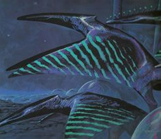 Stripewing - Alien Species Wiki - Concept art for fictional planet Darwin IV.
