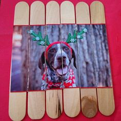 A puzzle made with popsicle sticks and a recycled holiday card: Simply glue a photo onto some popsicle sticks, wait for it to dry, then use a craft knife or razor blade to cut.