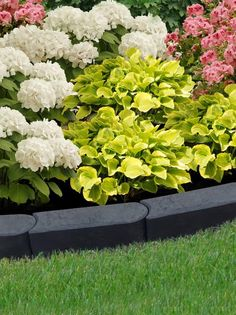 40. Use Mineral Black to Edge Your Flowers
