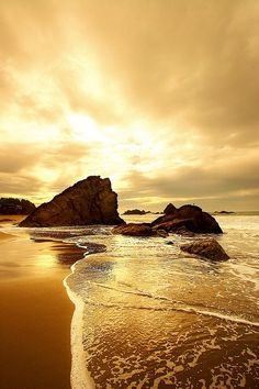 The most beautiful landscapes in the United States pictures): Land Water golden seascape Harris Beach Brookings Oregon Beautiful Sunset, Beautiful Beaches, Beautiful World, Foto Picture, Belle Photo, Beautiful Landscapes, Wonders Of The World, Nature Photography, Beautiful Pictures