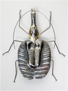 Violin beetle in sterling silver by Elizabeth Goluch, photographed by Steven Kennard