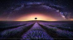Lavender field and Milky way by: JesúsmGarcía