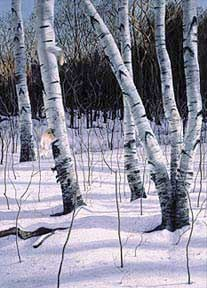 Painting Snow Using Watercolor, a step-by-step description by Vermont Artist William H. Hays