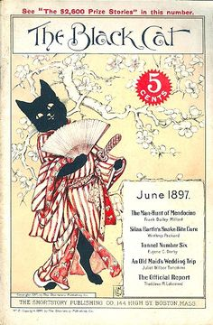 Cats in Art and Illustration: Black Cat 1897-06