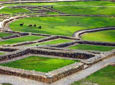 Ingapirca, the remains of a large Inca temple and estate in southern Ecuador.
