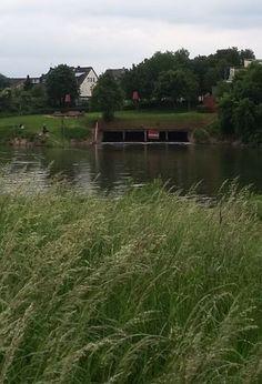 Mündung des Randkanals bei Worringen, Foto: S. Hopp