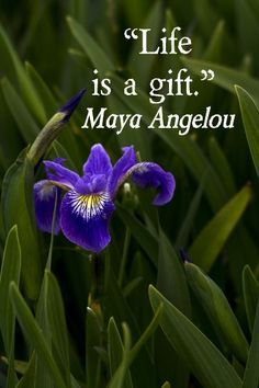 #Life is gift