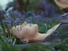 bright star, flowers, and abbie cornish image Bright Star Movie, Bright Stars, Legolas And Gimli, Merry And Pippin, Irish Mythology, Get My Life Together, John Keats, Greek Quotes, Beautiful Actresses