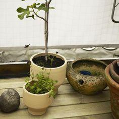 Edge Pot, outdoor