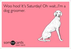 Pinned from someecards.com Woo hoo! It's Saturday! Oh wait...I'm a dog groomer. LOL