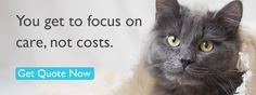 You get to focus on care, not costs. Get quote now.