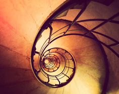 Paris Photograph Nautilus Shell Fine Art by JourneysEye on Etsy, $28.00