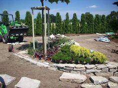Galeria zdjęć - Poradnik: Jak zaprojektować i założyć ogród, cz. 5 - modernizacja starego lub zaniedbanego ogrodu - Ogrodowisko