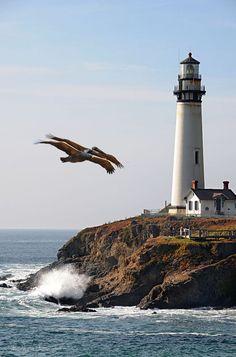 Senin elin nicedir gökyüzü Nicedir kavuşmak Akmak bir kuytu köşede sana  Sarılmaktı nicedir bir birikmişlikle...  Meral Meri /Deniz Fenerine Yolculuk