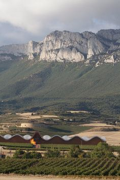 Rioja  Spain. To learn more about #Bilbao | #Rioja, click here: http://www.greatwinecapitals.com/capitals/bilbao-rioja