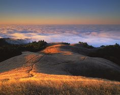 Mount Tamalpais State Park, California, US.