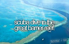 Scuba dive in the great barrier reef. http://media-cache0.pinterest.com/upload/150518812516105625_FzKOCiNM_f.jpg http://bit.ly/H48KN4 hpotter2 bucket list