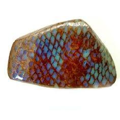 Fossilized snake skin in Boulder Opal // Queensland, Australia