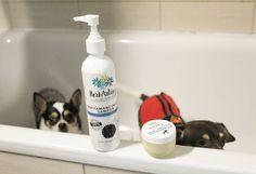 Séta utáni mancsmosás és ápolás védőkrémmel, van, akiknél ez már a mindennapos rutin része! :)  Kép: Kutyasarok Soap, Marvel, Beauty, Cosmetology, Bar Soap, Soaps