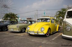 lowered yellow Bug http://www.classiccult.com/blog/siam-vw-festival-2014.html