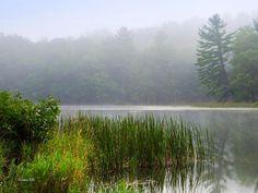 Nature Photo Scenic Lake Landscape Photography Nature Prints | Etsy Fine Art Photography, Landscape Photography, Nature Photography, Landscape Prints, Landscape Art, Sunrise Landscape, Lake Art, Thing 1, Nature Prints