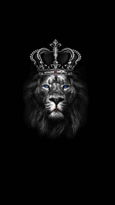 HD Mobile Phone Wallpapers for Android or iPhone Iphone Wallpaper King, Lion Live Wallpaper, Beats Wallpaper, Hacker Wallpaper, Black Phone Wallpaper, Animal Wallpaper, Screen Wallpaper, Hipster Wallpaper, Skull Wallpaper