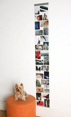 Dorm Rooms / Dorm Wall Decor To Add Pizzazz To Your Side Of The Room! - Wordever