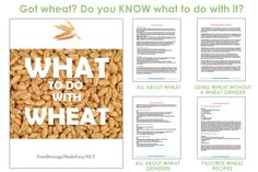 FREE.. WHAT TO DO WITH WHEAT HANDOUT - Food Storage Made Easy