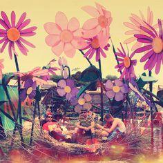 Flowers by Ekaterina Shevi on 500px
