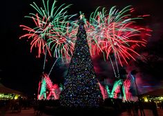 Illuminations Christmas Show2-Tom takes the most amazing photos. I wish I could take pictures like this!!!!!