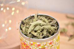 Décoction, infusion, macération, plaidoyer pour la tisane. | Green Leaves