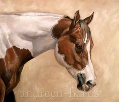Hey, I found this really awesome Etsy listing at https://www.etsy.com/listing/60753720/paint-horse-print-8-x-10