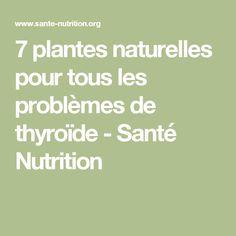 7 plantes naturelles pour tous les problèmes de thyroïde - Santé Nutrition