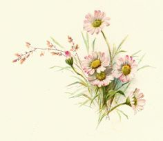 Free Vintage Floral Art Prints | Free Flower Graphic: Vintage Pink Daisy Clip Art and Poem from Wedding ...