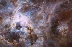 This new Hubble image shows a cosmic creepy-crawly known as the Tarantula Nebula in visible, infrared and ultraviolet light. This region is full of star clusters, glowing gas, and thick dark dust. Image released Jan. 9, 2014. http://www.space.com/24246-tarantula-nebula-hubble-telescope-photos-aas223.html?cmpid=518257
