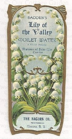 Antique PERFUME Label Lily of the Valley Toilet Water