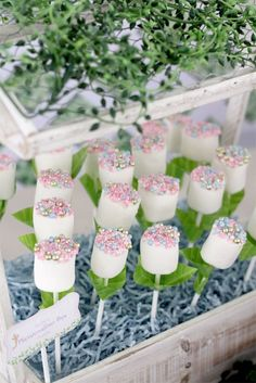 Marshmallow Fairy Pop Plants from a Magical Secret Garden Birthday Party via Kara's Party Ideas | http://KarasPartyIdeas.com (9)