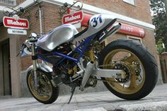 Radical Ducati S.L.: OLD BLUE , phtograhed by Paolo Grana