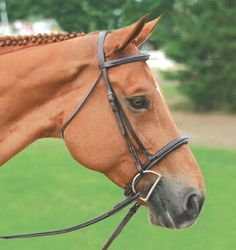 "Connemara Padded Fancy Stitched Bridle  Crafted with accent stitching and padding on the noseband and browband offering additional comfort for your horse. This exceptional bridle features raised, hand burnished edges and durable hardware and is complete with 5/8"" laced reins.  www.greenhawk.com"