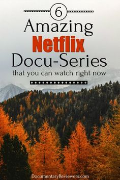 15 Must-See Netflix Docuseries to Move to the Top of Your Queue Netflix has created some amazing documentary series and these are the best of the best! There's something for everyone in these extended documentaries - true crime, food, and even cults! Best Documentaries On Netflix, Netflix Hacks, Netflix Dramas, Good Movies On Netflix, Netflix Tv, Good Movies To Watch, Netflix Drama Series, Best Shows On Netflix, Netflix Shows To Watch