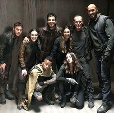 Marvel Agents of Shield Series Da Marvel, Marvel Show, Marvel Dc, Marvel Actors, Movies Showing, Movies And Tv Shows, Shield Cast, Agents Of S.h.i.e.l.d, Iain De Caestecker