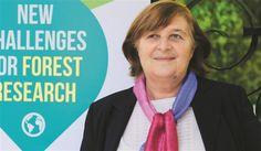 O Centro de Estudos Florestais (CEF) do Instituto Superior de Agronomia assinalouos 40 anos com uma conferência internacional. Coordenadora fala dos desafios.