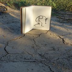 Dry ? # #elyxyak #nature